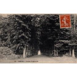 Sahurs avenue tremonville