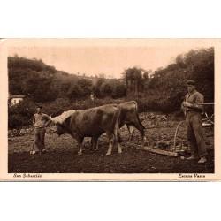 Attelage vaches et fermiers