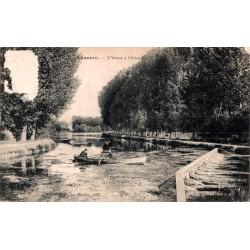 Auxerre l'yonne à l'arbre
